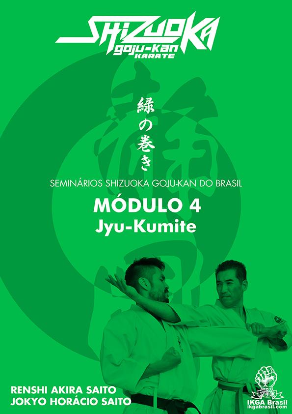 modulo-4-internet